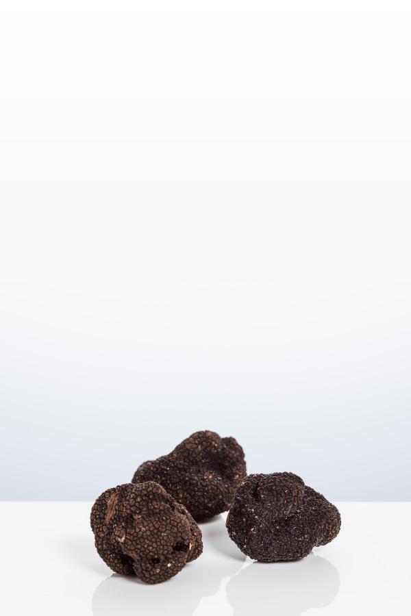 Truffe noire du Périgord - Photo